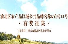 渝北农产品区域公共品牌名称&口号获奖名单