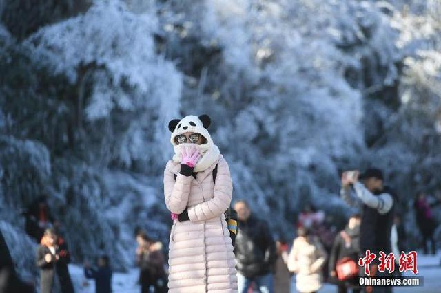 金佛山银装素裹 雪景美如画!