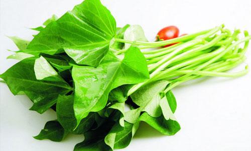 红薯叶才是真正的绿叶菜之王