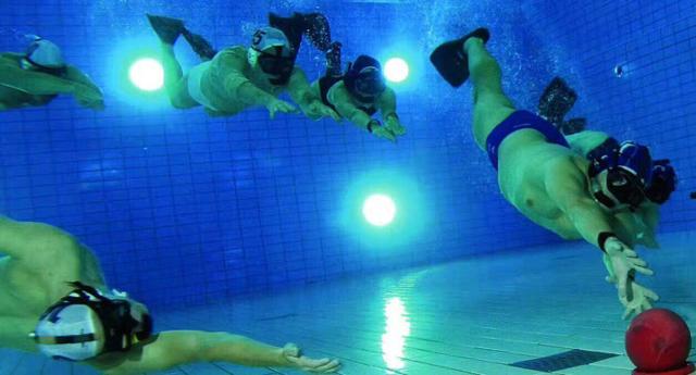 """重庆成立""""水下曲棍球""""俱乐部 水下运动爱好者添耍"""