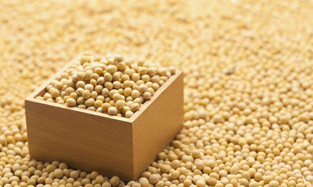 中美贸易重开战大豆价格创新低