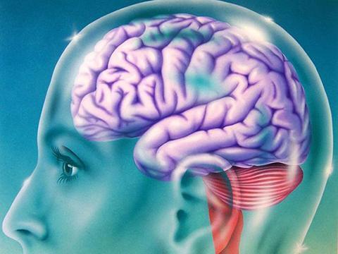 """最新研究表明""""主观年龄""""影响大脑衰老"""