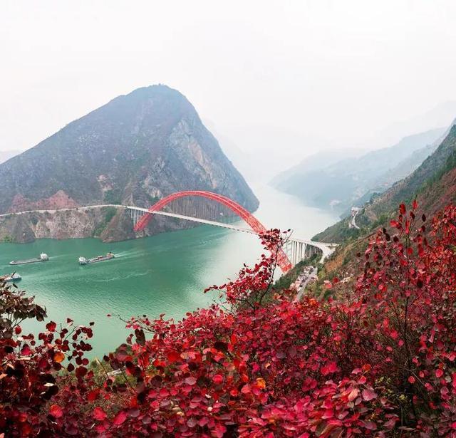 巫山国际红叶节17日开幕 游巫山看航模,吃烤鱼品三峡图片