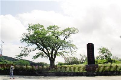 黔江水市村:百年风雨洗礼的红色记忆
