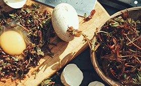 春天的味道 椿芽和鹅蛋真是一组完美cp