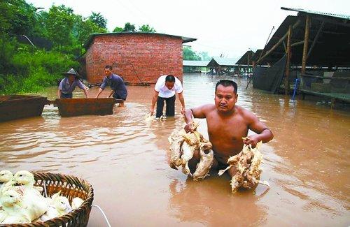 暴雨袭击16区县 20.83万人受灾