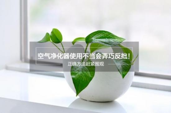 空气净化器使用不当 易引发健康隐患