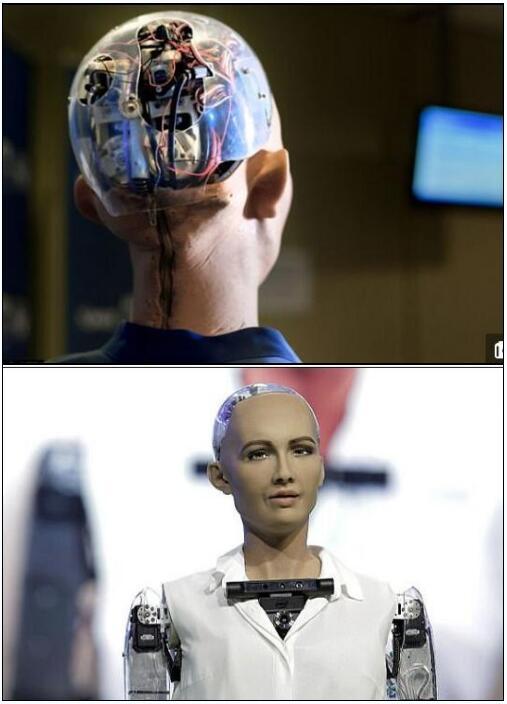 世界首个机器公民:我想成家想要个女儿