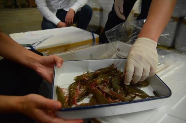 重庆市民有口福了 泰国活对虾、活草虾10小时产地直达重庆市民餐桌!