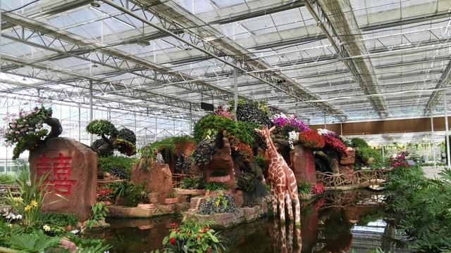 这个大观园太好玩!迷宫、美食、花海让你嗨尽兴