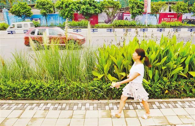 两江新区:会呼吸的地面