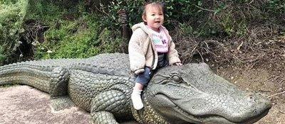 """陈冠希女儿骑""""鳄鱼""""萌笑像足老爸"""