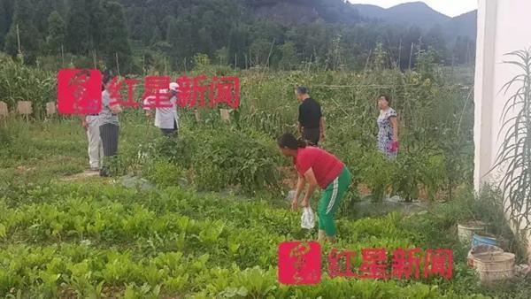 小山村避暑涌进3万重庆人 场面爆过大景区