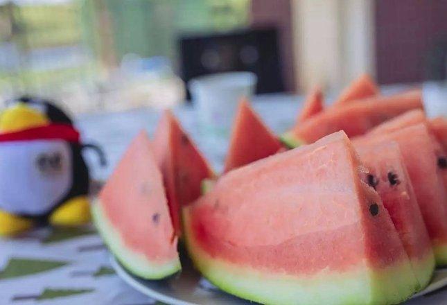 吃瓜群众看这里 重庆9大摘西瓜地推荐 想吃什么全都有