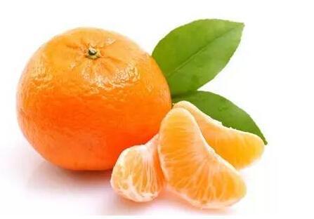 巴西科学家:食用柑橘类水果有助于减肥