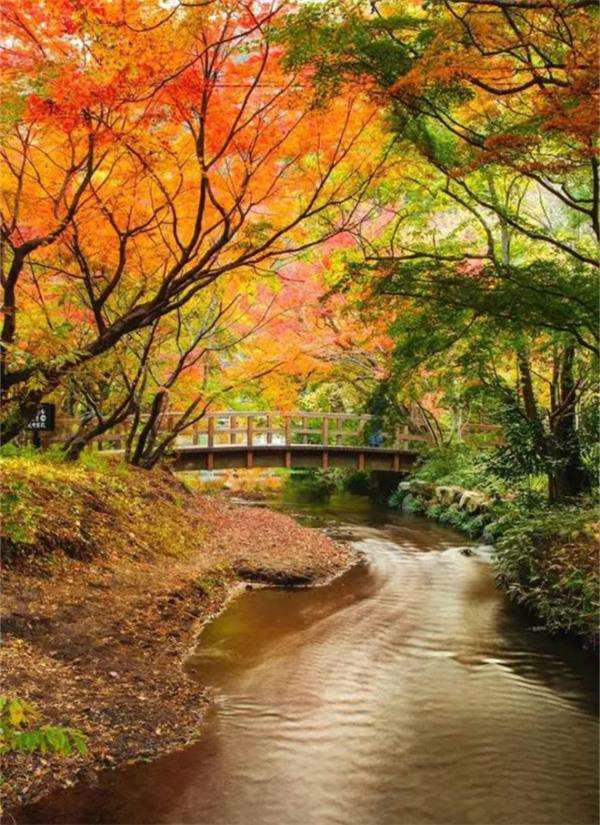 去日本最美的5个隐世小镇 睡到自然醒 - 温泉游记攻略图片