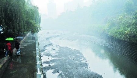 经过两个多小时的放水作业,位于杨家坪动物园旁长近千米的桃花溪水
