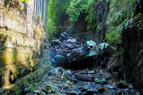 客车冲下20米高堡坎 水桶粗的大树没挡住图片