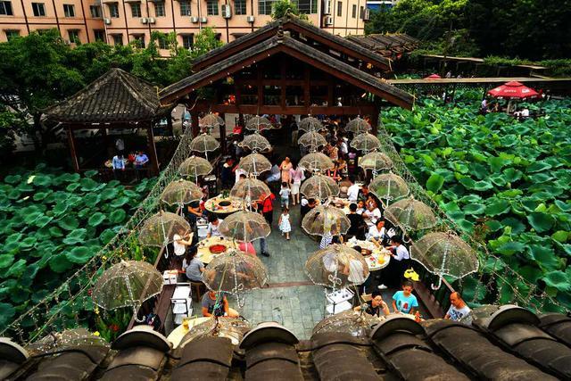 第25届国际猪病大会后 重庆鲜龙井接待1500名外籍专家