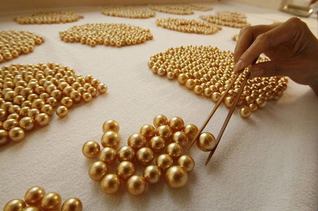 菲不起眼小岛专门产珍珠 价格是金子十倍