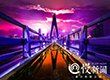 凌晨3点的东水门大桥 你见过吗?