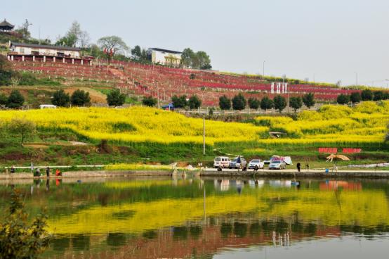 第三届歌乐山国际慢城春季赏花节开幕 十里桃花等你来