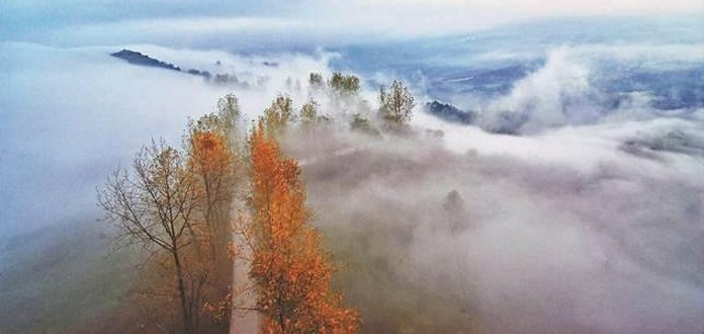 斑斓冬日 重庆的冬天有更多的颜色