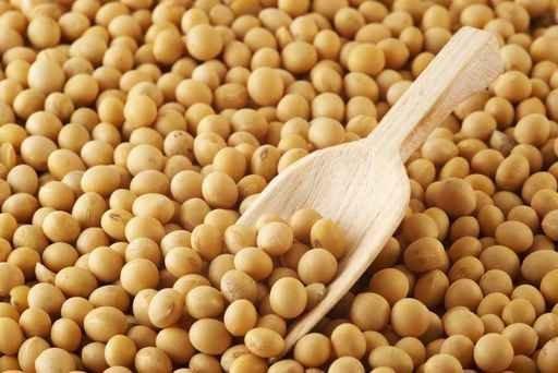 国产大豆变被动为主动 满足多样化需求