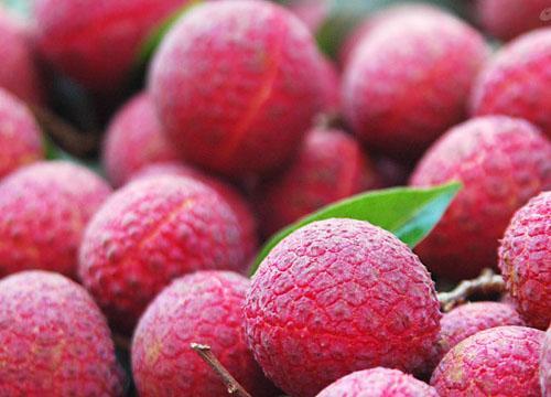 空腹大量吃荔枝 当心致命低血糖
