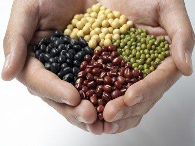 大豆家族都有营养优势