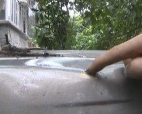 枯枝砸伤树下汽车