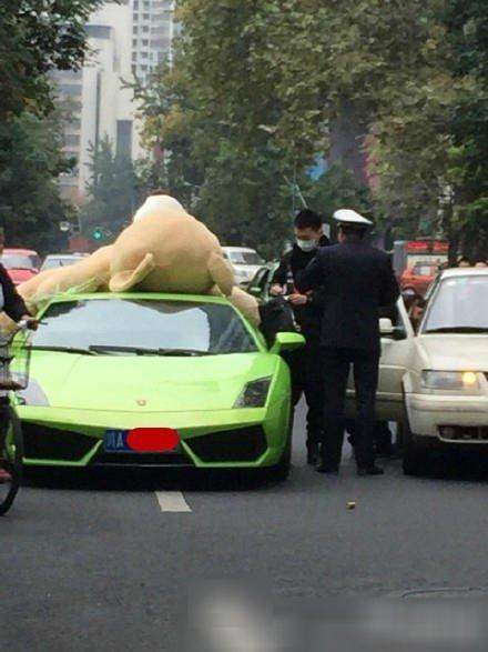 成都一兰博基尼车顶绑超大号毛绒熊被交警查处 组图高清图片