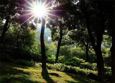 平顶山公园都市里的氧吧 是市民健身的好去处