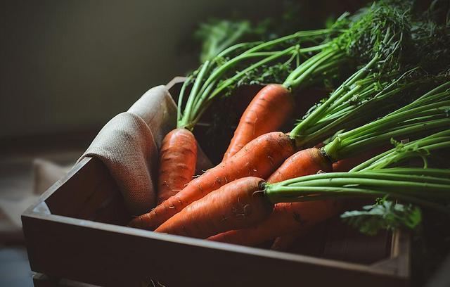 茄子胡萝卜 细数5种常见换血食物
