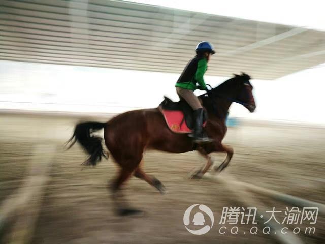"""【重庆学神NO.14】帅气!13岁男孩成专业骑手 已有7年""""驾龄"""""""