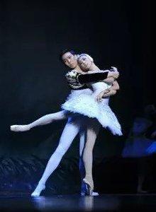 免费看芭蕾精品展演