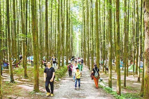 """巫山南川被评为""""全国森林旅游示范县"""""""