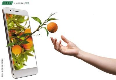 """""""网红""""橙子去年劲爆今年退热"""