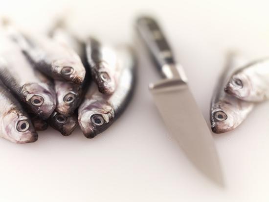 鱼身上五个宝贝别扔