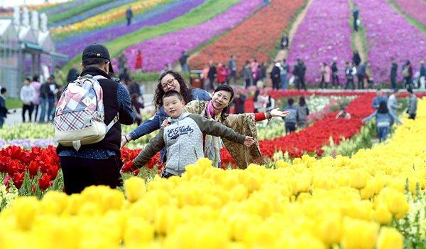 渝北区高端休闲观光农业助农增收