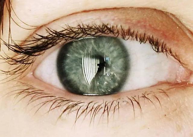 """盲人的梦里会""""看见""""什么?"""