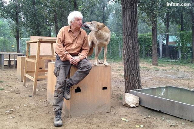 我看影戏《狼图腾》