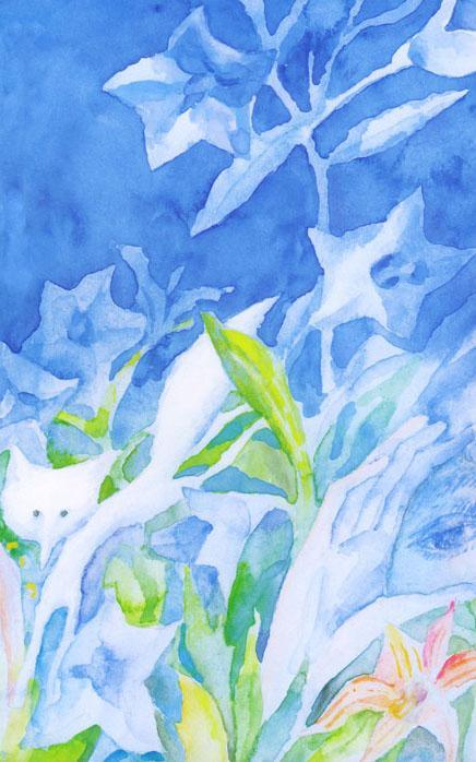 【阅独】安房直子《狐狸的窗户》