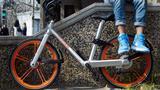 共享自行车照出的妖孽,全都是低素质的吗?