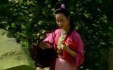 芦苇:灯姑娘多姑娘的蒹葭倚玉之叹