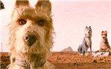 《犬之岛》:不仅仅是一部关于狗的电影