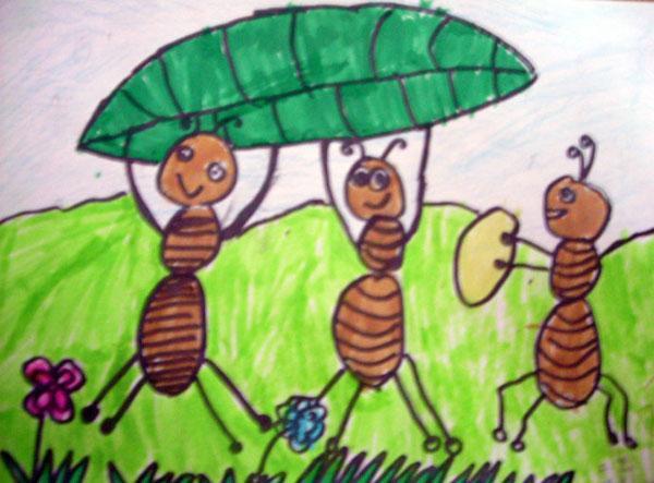 蚂蚁逃跑时为何无踩踏?图片