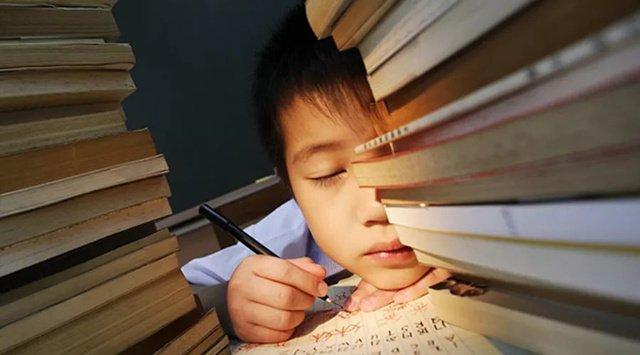 讓貧困區的孩子也有機會上哈佛,我支持教育部減負