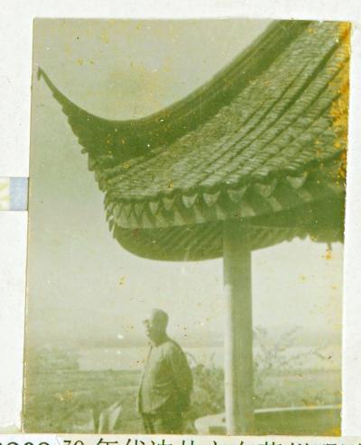 四十年前,沈从文下江南