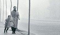 西班牙作家萨丰《风之影》选读